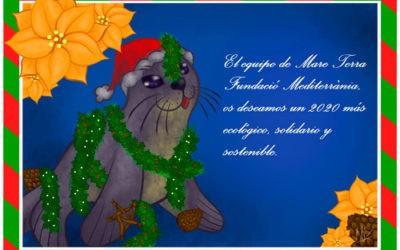 Felicitacion de Navidad