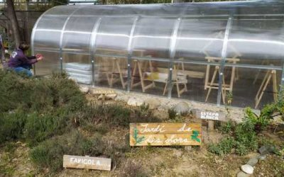 Calçotada e inauguración del invernadero en la Escola Natura